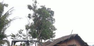 Rumah Warga digusur Oleh PT Langkat Nusantara Kepong (LNK) Malaysia