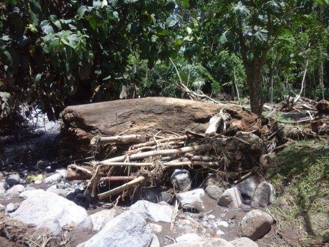 Pembalakan liar mengakibatkan banjir bandang