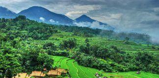 Masyarakat dalam Menjaga Kelestarian Lingkungan Hidup