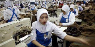 Indonesia Dorong Kualitas Tenaga Kerja Muda dan Pegawai Perempuan (Muda News)
