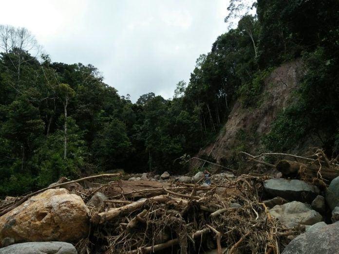 Lihat Banyaknya Gelondongan Kayu,Tim Kementerian Pastikan Penyebab Banjir Bandang Sidimpuan