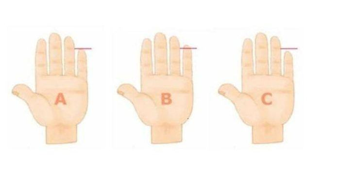 Tinggi jari kelingking tangan kiri bisa juga digunakan untuk memprediksi kepribadian seseorang. Cek di sini.