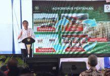 Foto: Presiden Jokowi saat menghadiri Hari Tani Nasional 2017, di Kelurahan Kalibening, Kecamatan Tingkir, Kota Salatiga, Provinsi Jawa Tengah, Senin (25/9).
