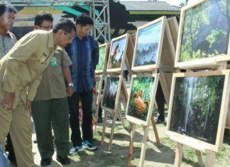Hutan Tropis Sumut