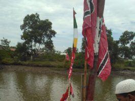 Perlombaan Perahu Mesin