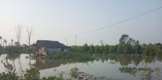 Warga Pangkalan Dodek Pusing, Akibat Sipembuka Lahan, Air Sungai Masuk Pemukiman