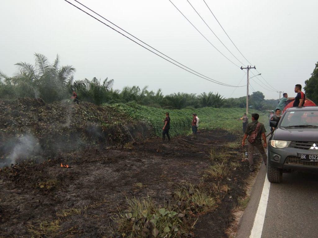 Kebakaran Lahan PTP Sipep, Diduga Akibat Semaknya Parit Bekoan
