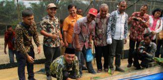 Plt Bupati Labuhanbatu, Harapkan Petani Berinovasi