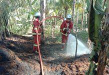 Kebakaran Pangandaran, Pengolahan Limbah Sabut Kelapa Terbakar