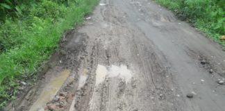 Desa Karya Maju, Pemuda Berharap Bupati Langkat Perhatikan Jalan Rusak