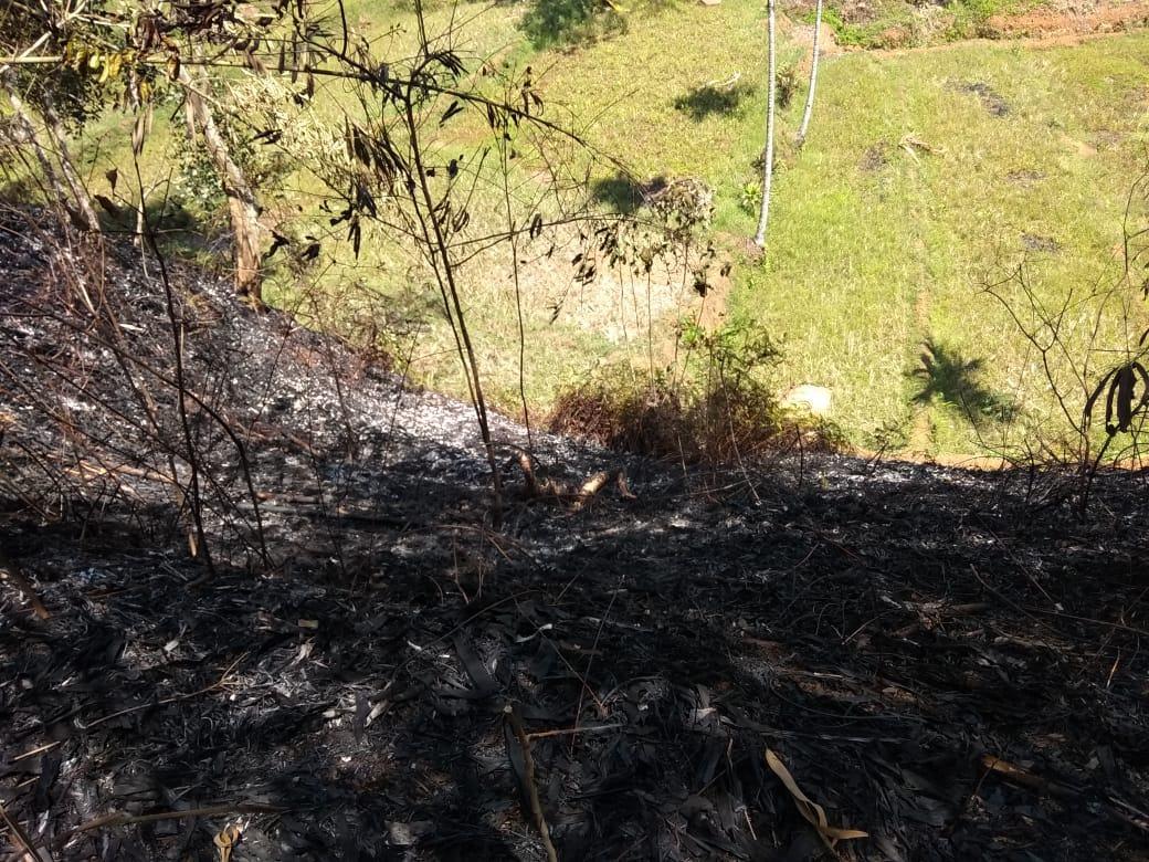 Kebun Bambu Terbakar, Warga Ciamis Tewas