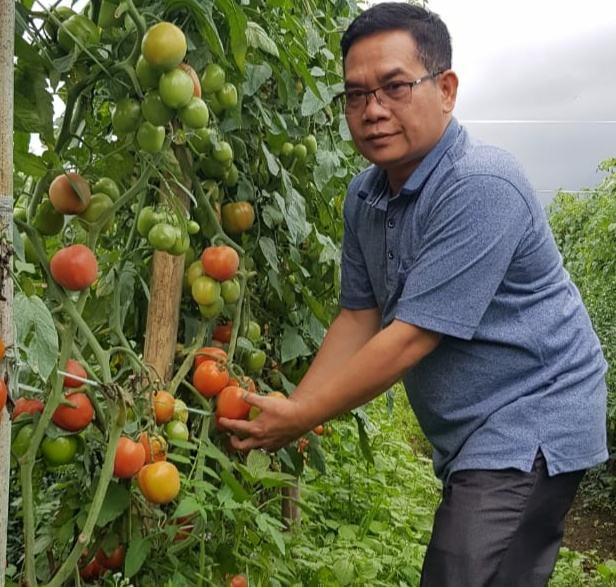 Pupuk Langka, Petani Mengeluh ke Ketua DPC PDIP Langkat