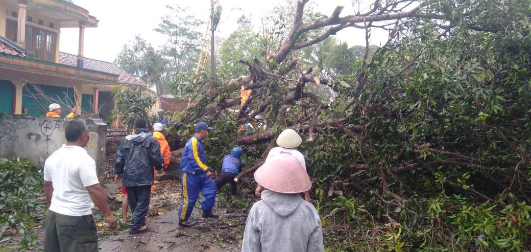 Hujan Deras Ciamis, Rumah Warga Rusak dan Pohon Tumbang