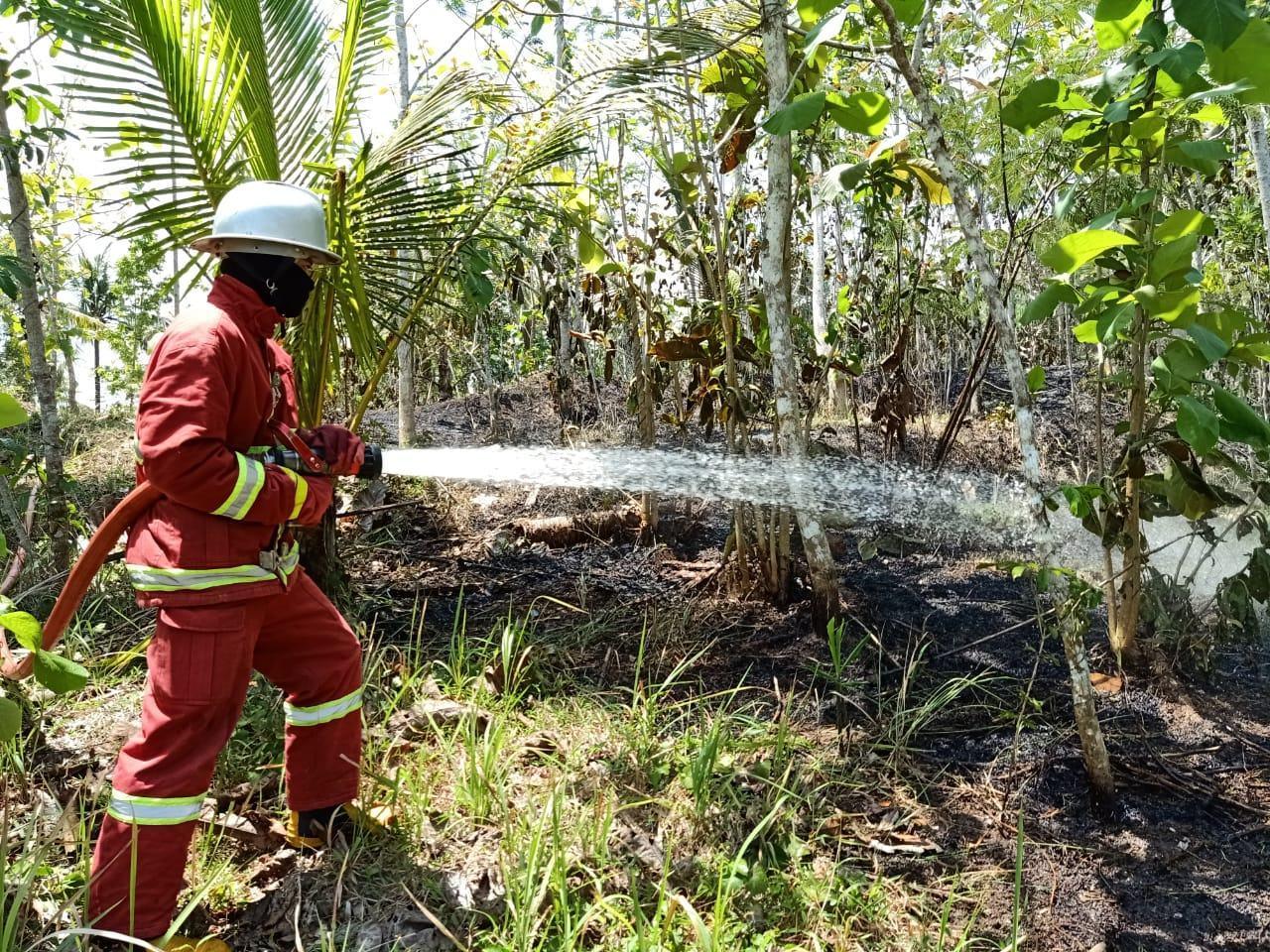Kebakaran Lahan, Damkar Pangandaran Terjun Langsung Padamkan Api