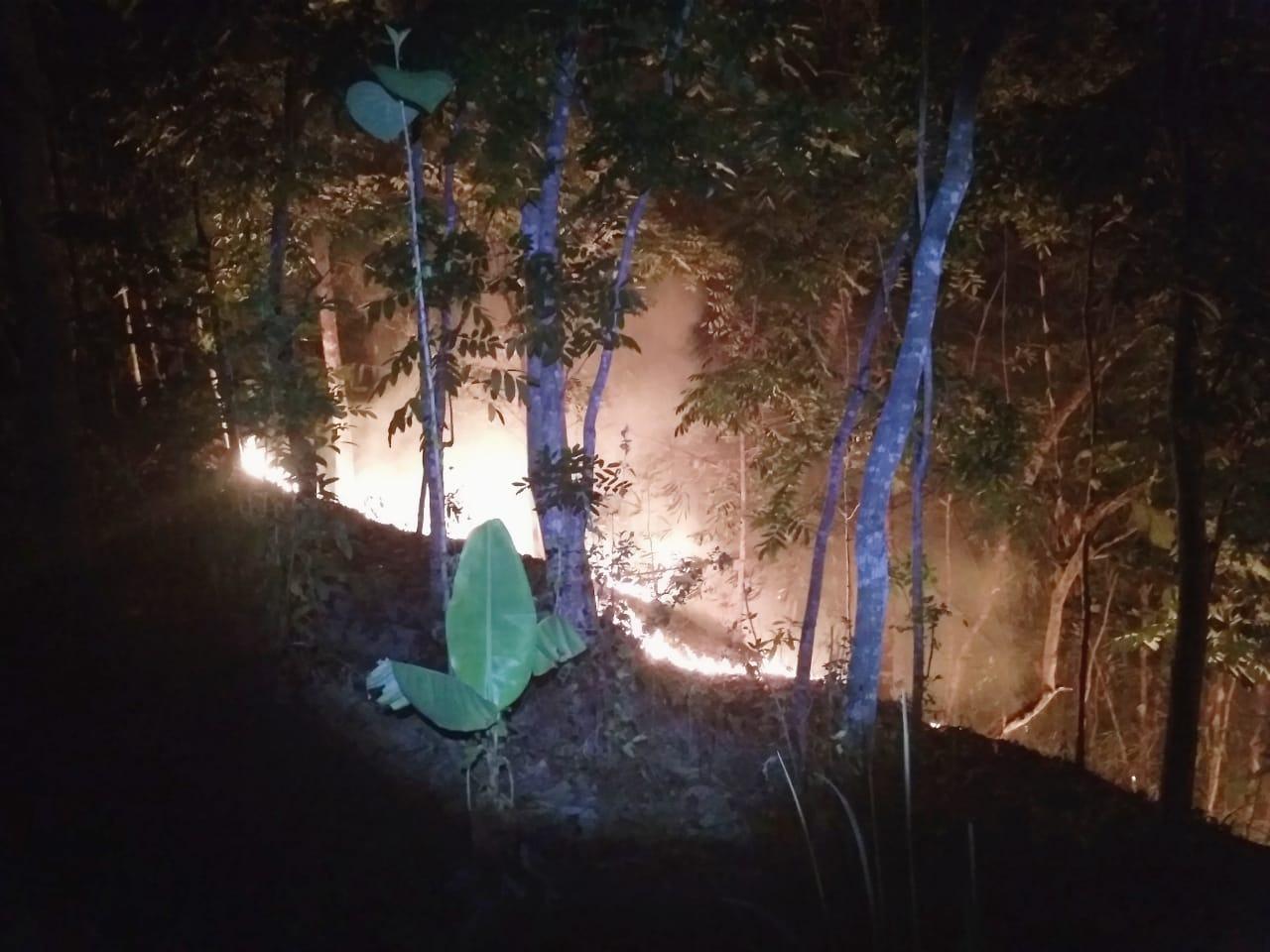 Kebakaran Banjar, 5 Hektare Lahan Milik Warga Dilalap Si Jago Merah