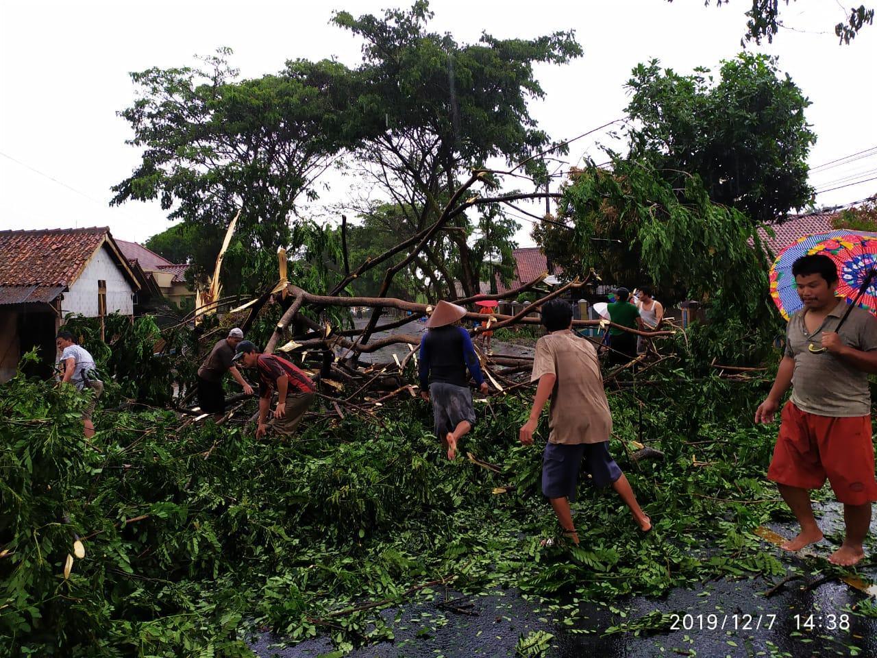 Hujan di Ciamis, Kabel PLN Ditimpa Pohon