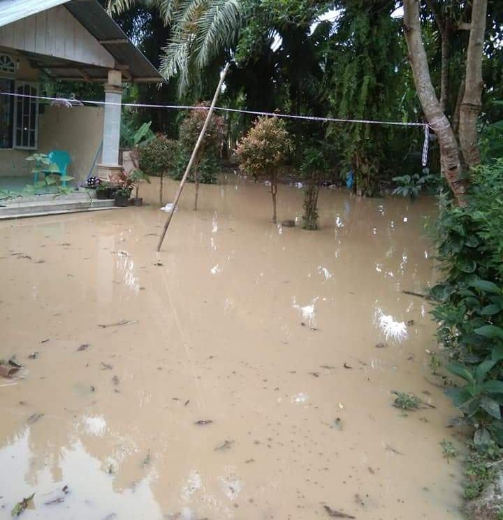 Sungai Wampu Meluap, Kandang Kambing dan Rumah Warga Tergenang Air
