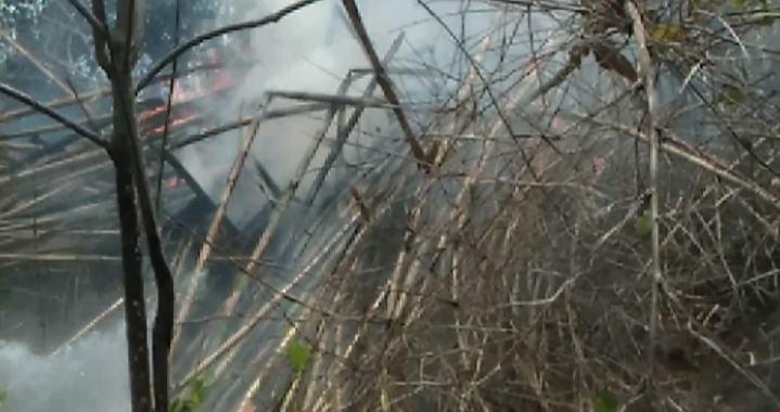 Lahan Bambu PT APL Terbakar, Diduga Api Berasal Pembakaran Kayu