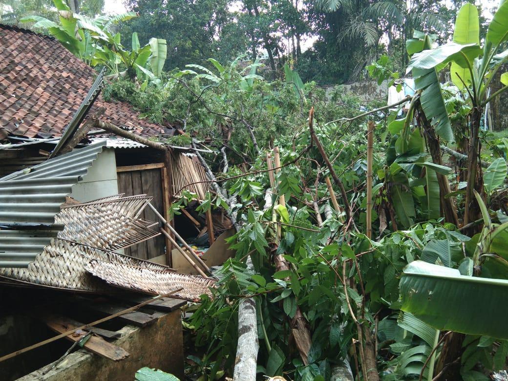 Hujan Deras dan Angin Kencang di Ciamis, Rumah Warga Ambruk Tertimpa Pohon