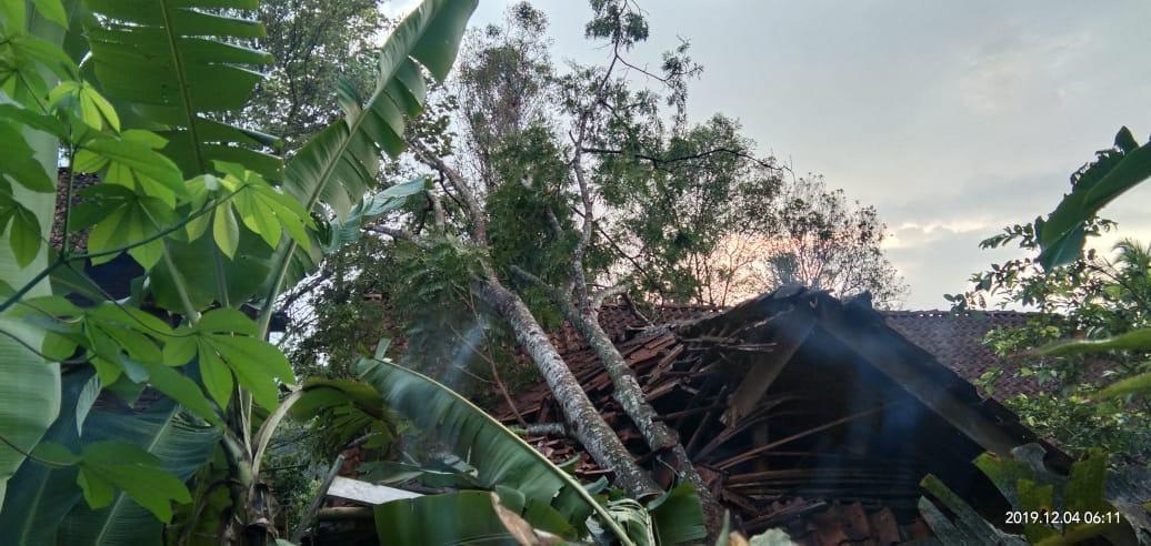 Hujan di Ciamis, Tagana Potong Pohon Tumbang
