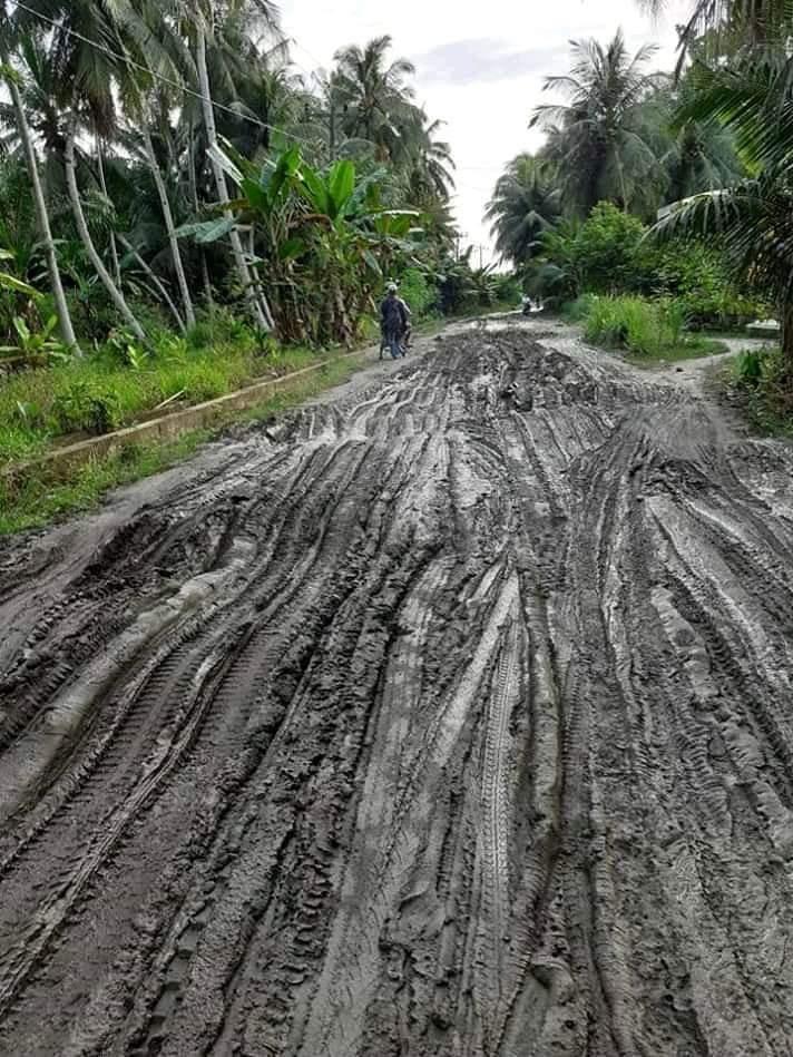 Jalan Tanjung Pura, Kubangan Kerbau Pindah Ditengah Jalan