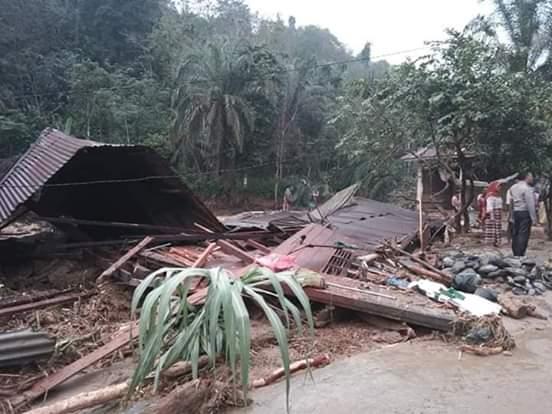 Gema Labura, Minta Kepolisian Menindak Tegas Pelaku Illegal Logging
