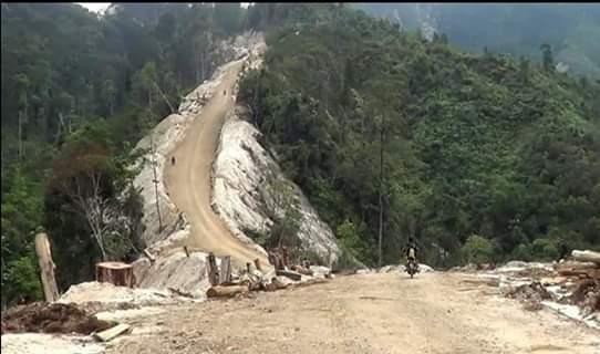 Gema Labura, Berharap Gubsu dan Polri Tidak Melindungi Pelaku Illegal Logging