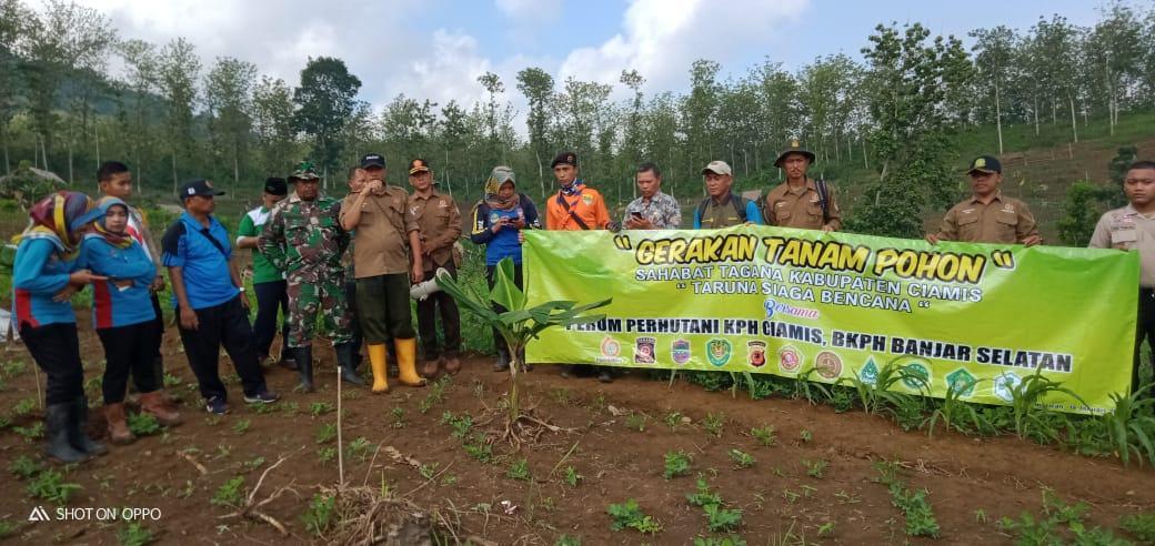 Tagana Ciamis, Bersama PP KPH Ciamis dan BKPH Banjar Selatan Lakukan Gerakan Tanam Pohon