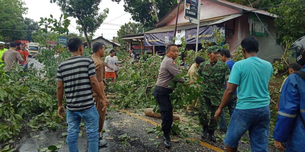 Hujan dan Angin Kencang di Banjar, 2 Rumah Warga Tertimpa Pohon