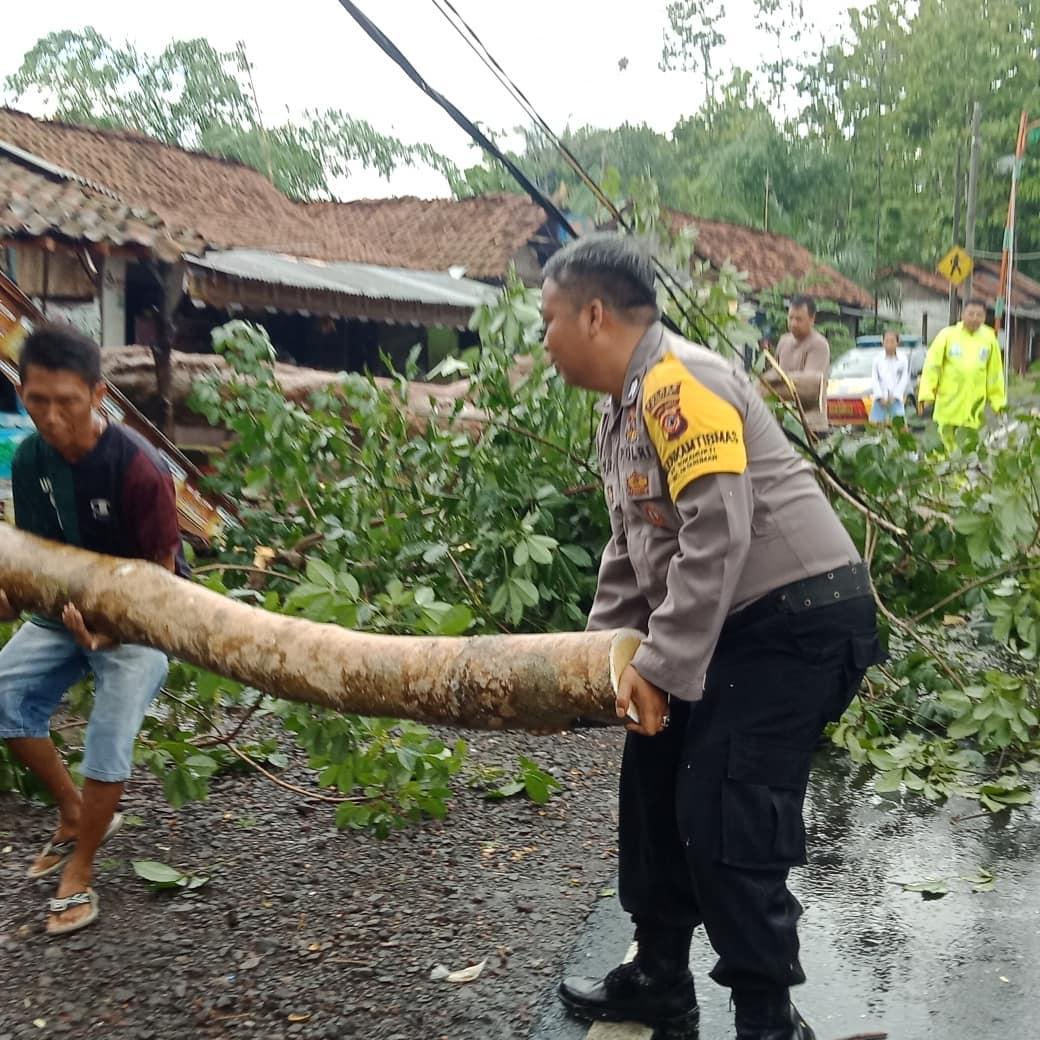 Hujan dan Angin Kencang Banjar, Polsek Pataruman Bersama Relawan Evakuasi Pohon Tumbang