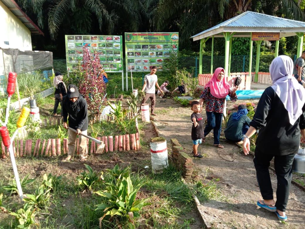 KKN-TT UNA 2020, Buat Taman Obat Menuju Desa Sehat