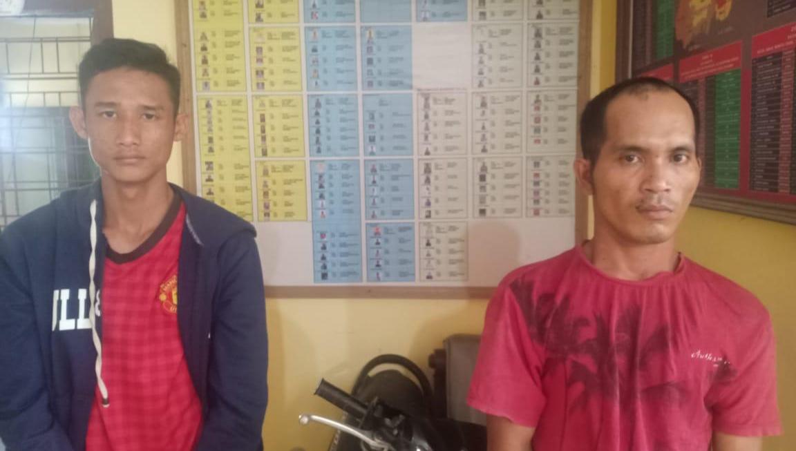 Polsek Bandar Pulau, Amankan 2 Pelaku Pencuri Lembu dan 6 Pelaku Masih Dikejar