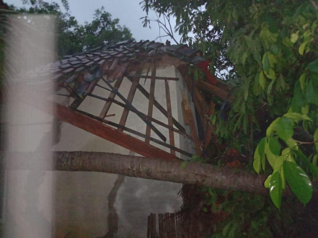 Hujan di Ciamis, Pohon Tumbang Menimpa Salah Satu Rumah Warga