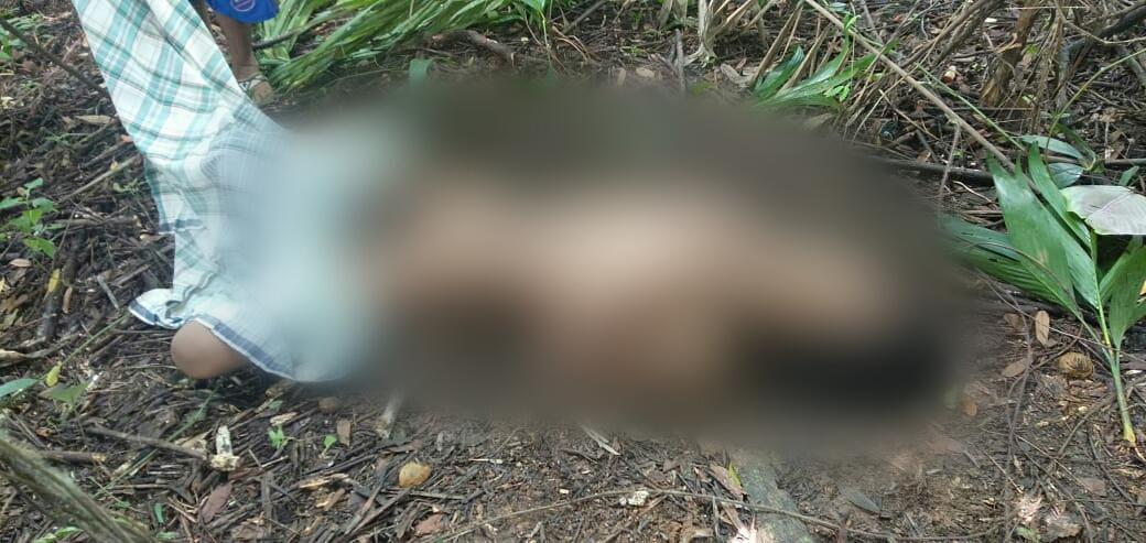 Penemuan Mayat Mr X di Tanjung Morawa, Sudah Dikerumuni Lalat