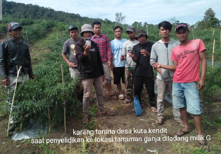 Karang Taruna Desa Kuta Kendit, Amankan Seorang Pengedar Sabu