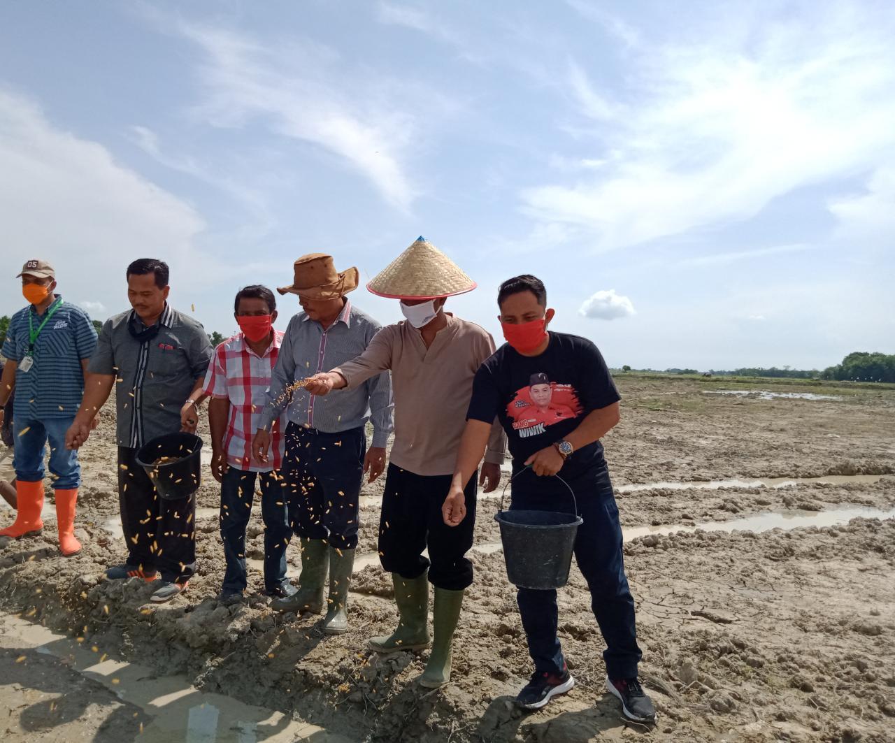 Peringati Bulan Kelahiran Bung Karno, DPC PDI Perjuangan Pelopor Serdang Bedagai BERDIKARI