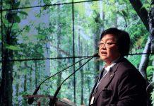 Deforestasi di Indonesia Menyurut Tajam, Ini Kata Menteri LHK