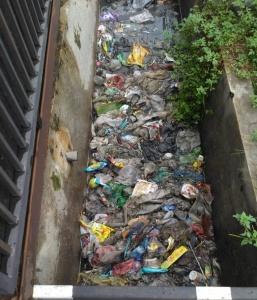 Walhi Minta Pemkab Deli Serdang Bongkar Bak Sampah di Desa Lalang