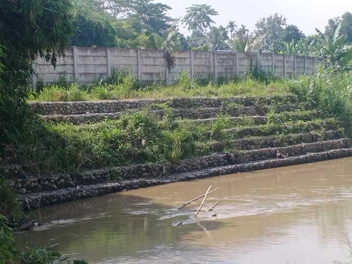 Taman Edukasi Buah Cakra, Dugaan keterlibatan Pengusaha Pekanbaru