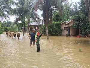 Banjir di Batang Serangan Langkat, Ribuan Rumah Terendam