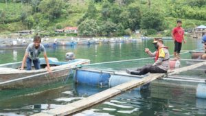 Kapoldasu, Gubsu dan Pangdam IBB Pimpin Penataan Keramba Jaring Apung di Danau Toba